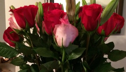 BLOG_Red+PinkRoses_01132016
