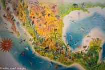 A map of Mexico with illustrations of what is (was traditionally?) found in each region.
