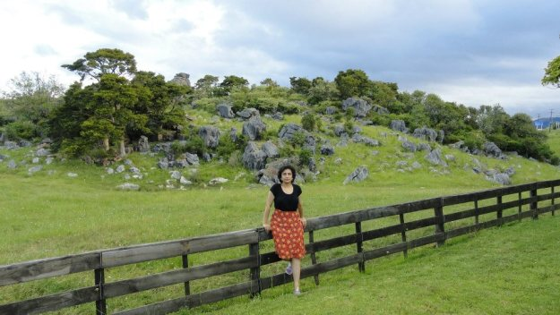 16 One of the best examples of a limestone landscape in the North Island