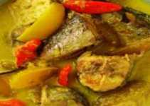 Resep Opor Ikan Tongkol yang Sedap