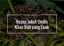 Resep Jukut Undis Khas Bali yang Enak