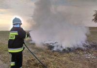 Pożar gałęzi w Puszczy
