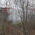 Pożar pozostałości roślinnych