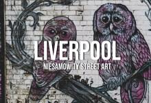 Co warto zobaczyć w Liverpoolu? Street Art!