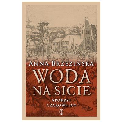 """""""Woda na sicie"""" Anna Brzezińska - najlepsze książki 2018"""