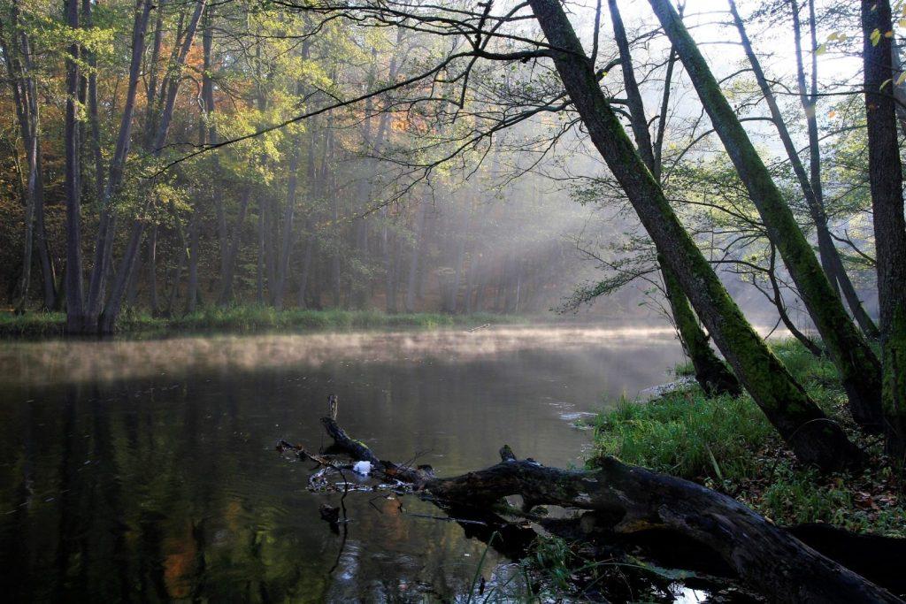 Szlak kajakowy Drawy w Drawieńskim Parku Narodowym