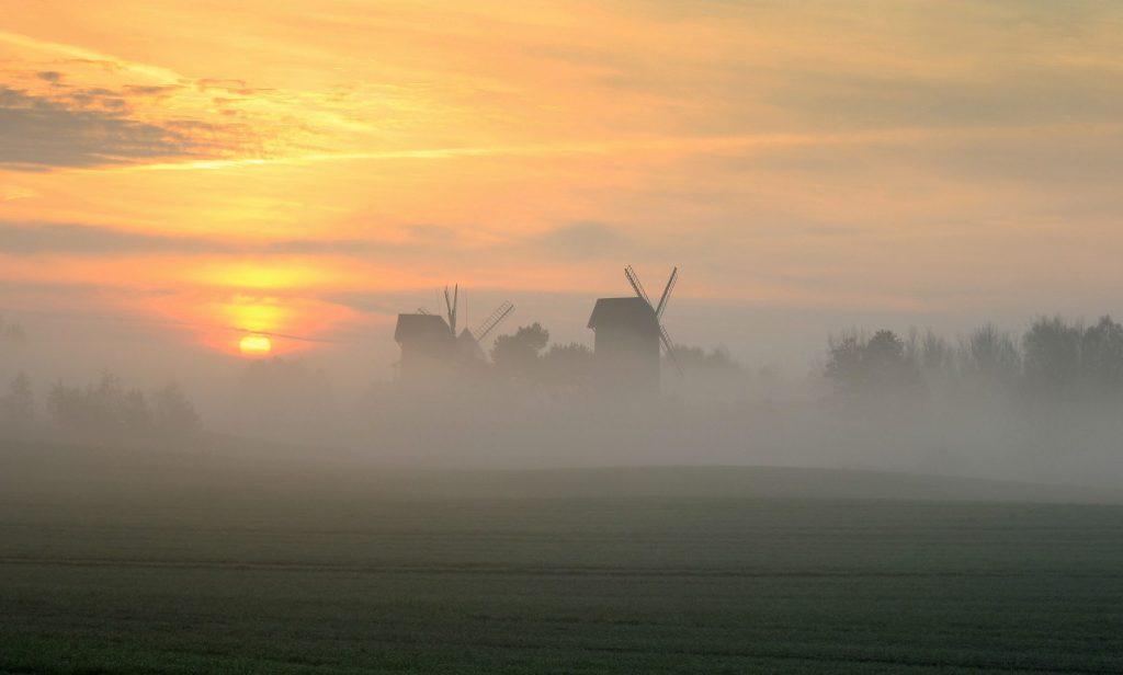 Wczesny poranek przy wiatrakach w Moraczewie