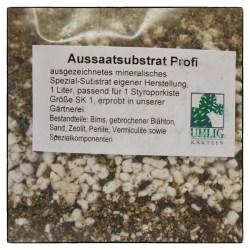Die größeren Samen können mit der Hand einzeln gesetzt werden. Kakteen sind Lichtkeimer. Löcher braucht man also in die Erde nicht zu bohren.