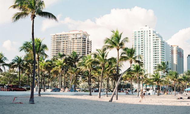 SPRACHREISE USA Miami Beach (26.01-7.02 2020) UPDATE