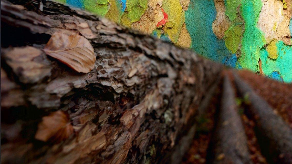 Kunst aus Naturmaterialien, bemalte Baumrinden. Bild: Volker Watschounek