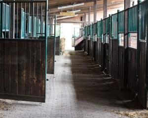 Stallgasse im Hofgut Adamstal. Bild: Volker Watschounek