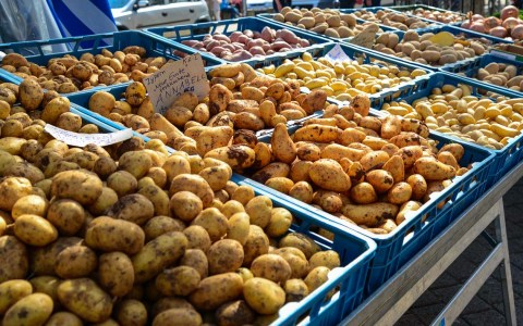 Impressionen vom Wiesbadener Wochenmarkt ... Kartoffeln soweit das Auge reicht. Sie heißen Annabell, Frühkartoffel ... Bild: Volker Watschounek
