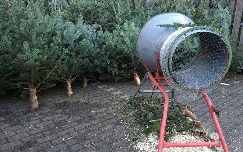 Weihnachtsbaum-Verkauf klassisch: Die Bäume stehen aneinandergereiht und warten darauf, verschnürt zu werden. ©2017 Marco Verch / Flickr