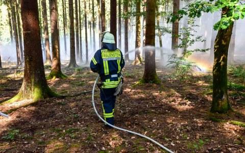 Waldbrandübung der Wiesbadener Berufsfeuerwehr – Wiesbadens Berufsfeuerwehr probt den Ernstfall im Stadtwald bei Frauenstein. ©2018 Volker Watschounek
