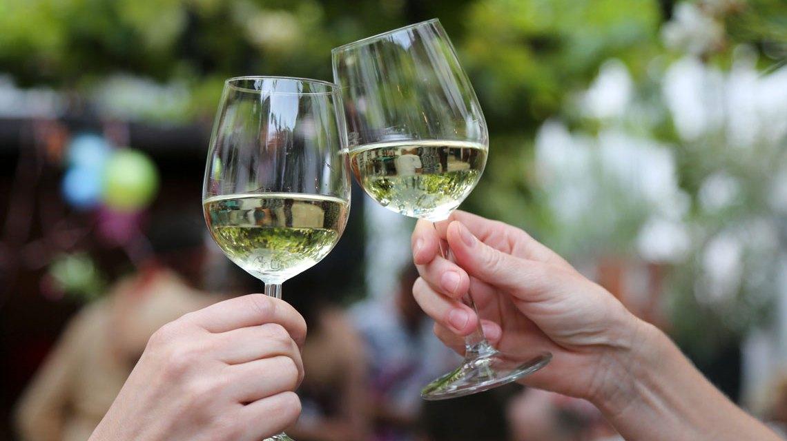 Weingüter präsentieren ihren aktuellen Jahrgang