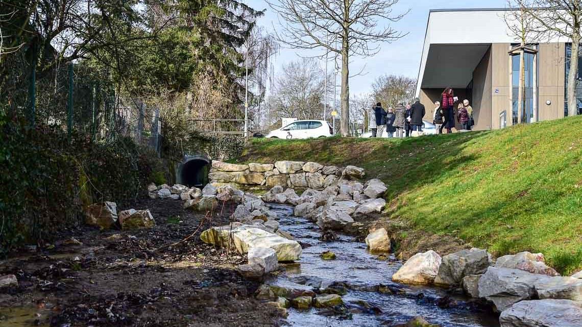 Renaturierung des Belzbach ©2019 Volker Watschounek