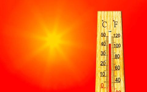 Deutschland hat einen neuen Hitzerekord. ©2019 Wetteronline