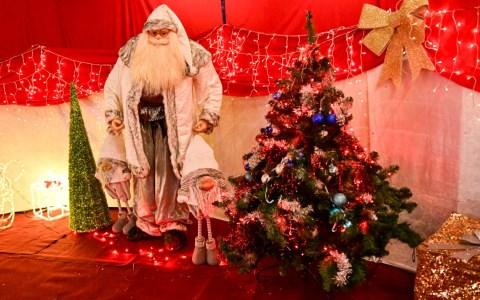 Der Zauber dieser stillen Zeit fängt sich im Kerzenschein. Auf Tannenzweig und grünem Kranz, umwirbt er uns im Flammentanz und zieht mit weihnachtlichem Glanz in unsre Herzen ein. Frohe Weihnachten