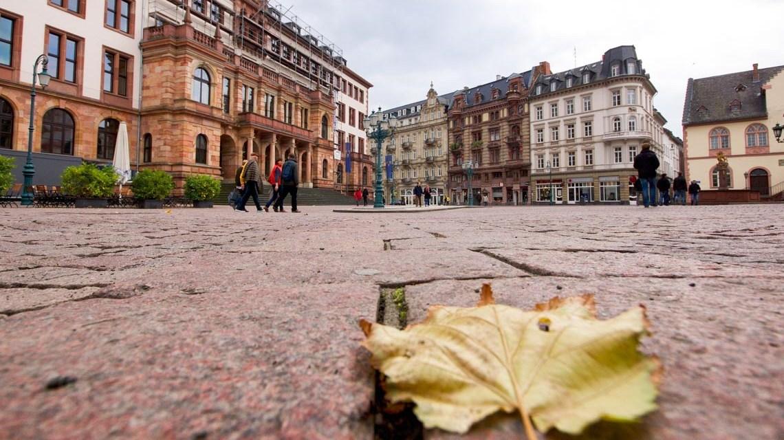 Umweltschutz in Wiesbaden