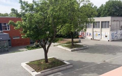 Theodor Flieder Schule