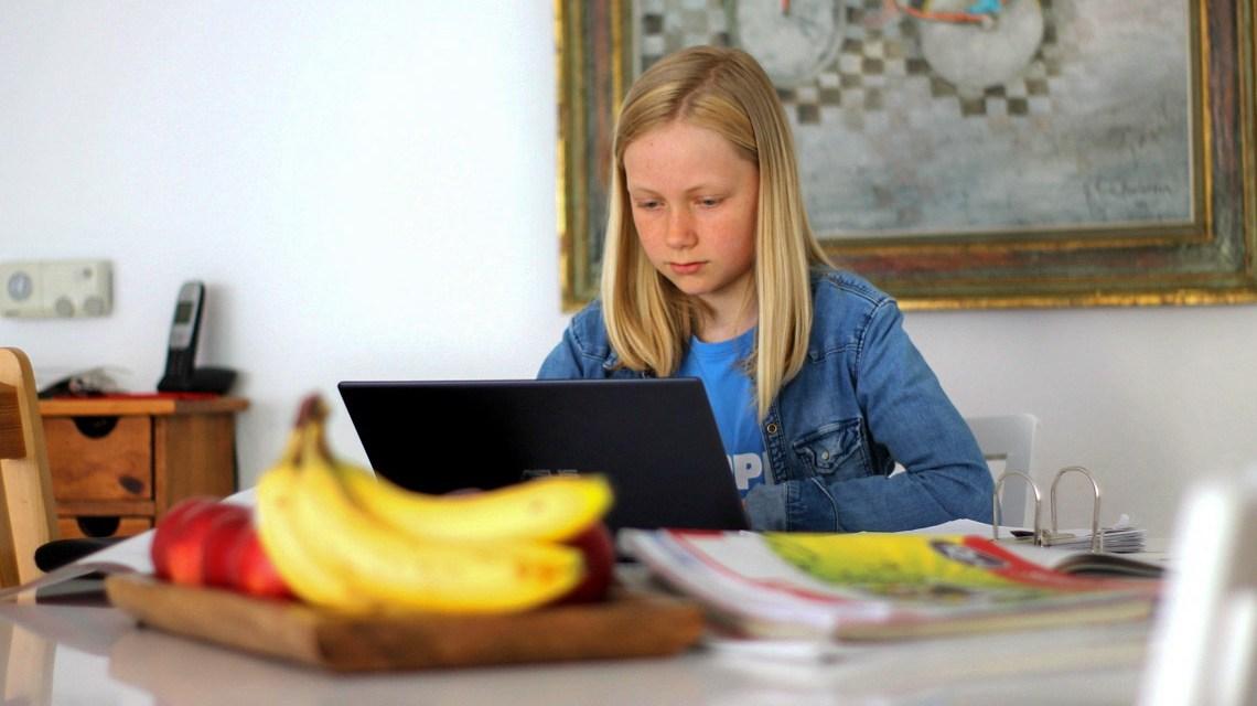Homesschooling: Bild von Markus Trier auf Pixabay