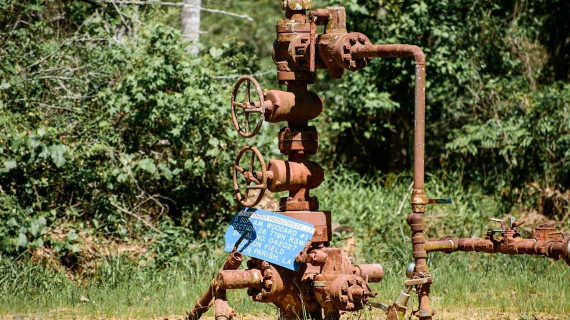 Grunselsbörnchen, Gasleitung. ©2020 Pixabay, Kyle McKaskle