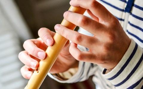 Musikunterricht , Blockflöten-Unterricht ©2020 congerdesign auf Pixabay