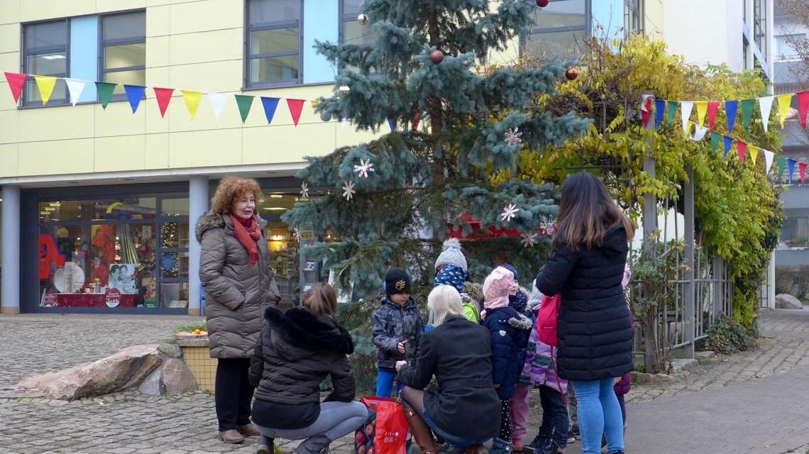 Weihnachtsbaum im Gräselberg