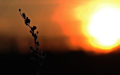 Sonnenuntergang ©2021 S. Hermann & F. Richter auf Pixabay