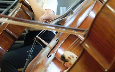 Cellisten unter sich