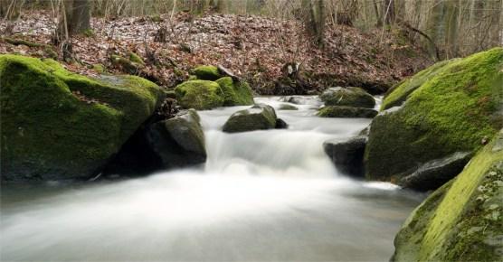 Wasserlauf im Höllengrund