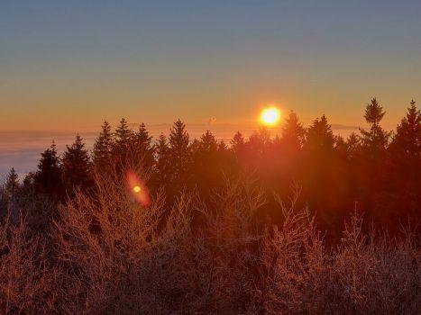 Sonnenaufgang am Bieleboh, Handyfoto