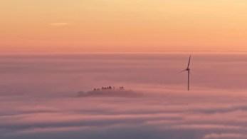 Die Bäume und das Windrad im Nebel