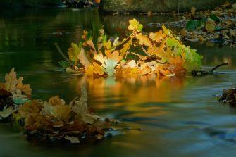 Goldener Herbst im Waldbach, Langzeitbelichtung