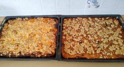 Blechkuchen mit Äpfel und pfirsich schmand blechkuchen im Holzbackofen gebacken
