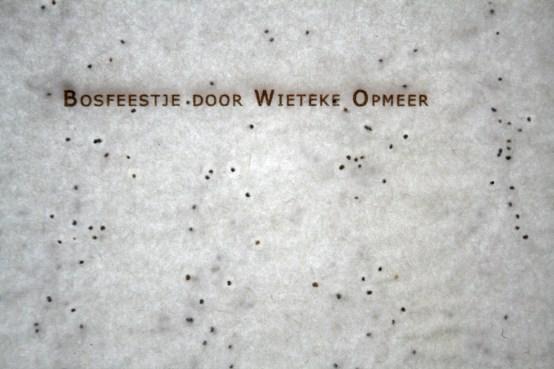 bosfeestje detail seed paper