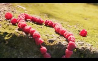 staindress film still necklace
