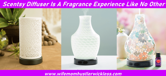 Scentsy Diffuser Is A Fragrance Experience Like No Other