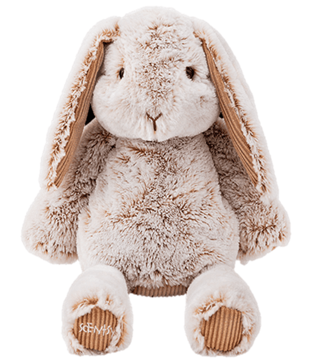 Brylee Scentsy Friend Bailey the Bunny Spring Summer 2021 Catalog