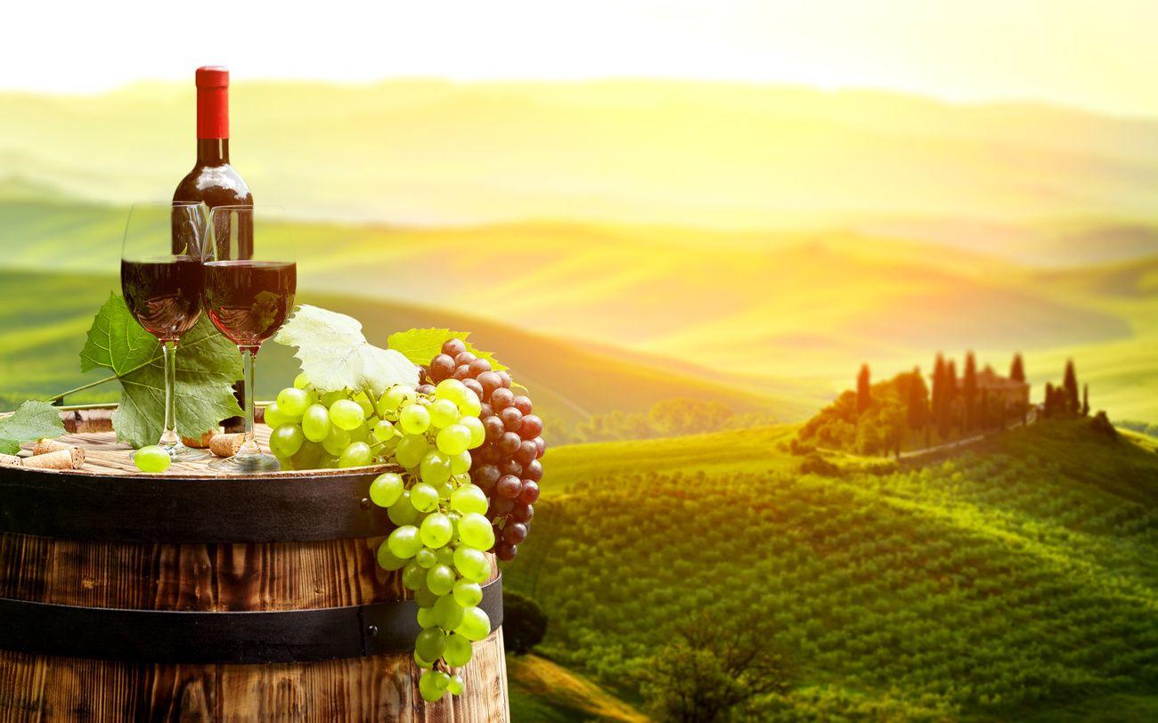 Genussreisen – Reisen und Kulinarik harmonisch vereint