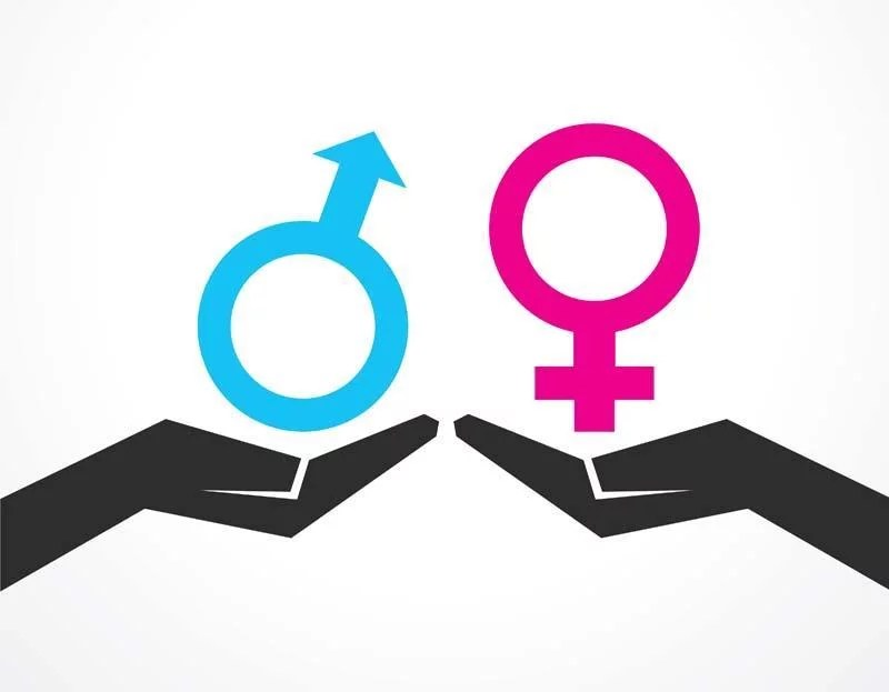 2019 year for Gender Equality