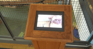 Museum video monitor