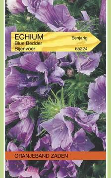 Slangekruid Echium plantagineum Blue Bedder