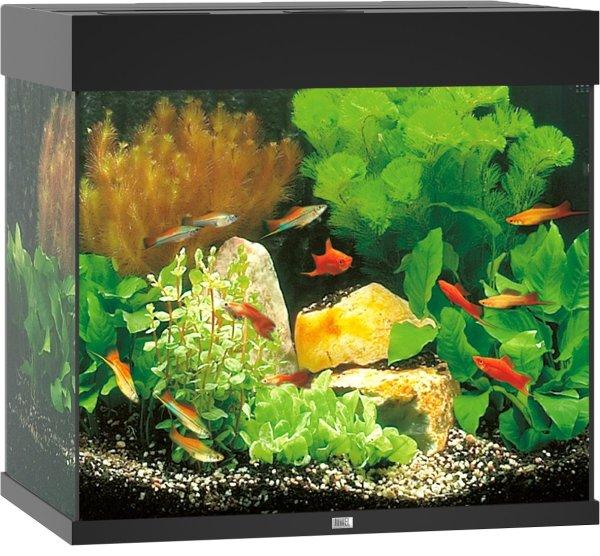 Juwel Lido 120 aquarium