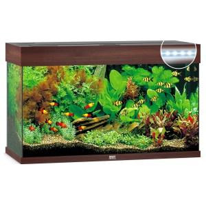Juwel Aquarium Rio 125 Led 80x35x50 cm - Aquaria - Donkerbruin Ca. 125 L