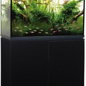 Trofis Colisa A-1000 Zwart - Aquarium + LED