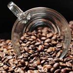 Met koffiebonen zet u elke dag een vers kopje koffie