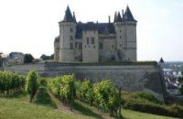 Kasteel Loire