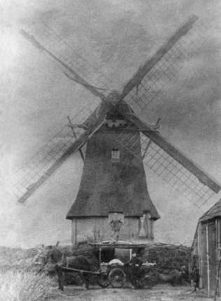 HF-Weinterp-Durk-sparjebird-1920 verbeterd