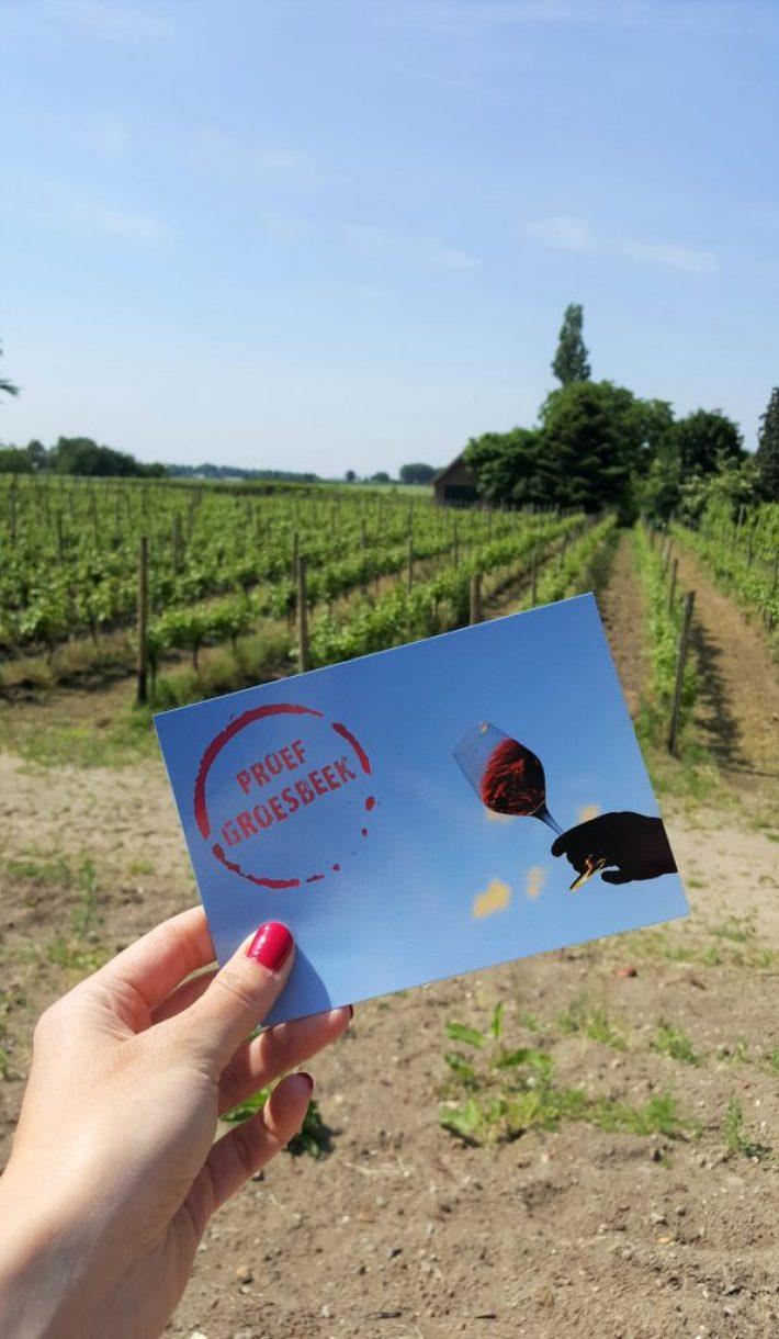 wijndorp Groesbeek